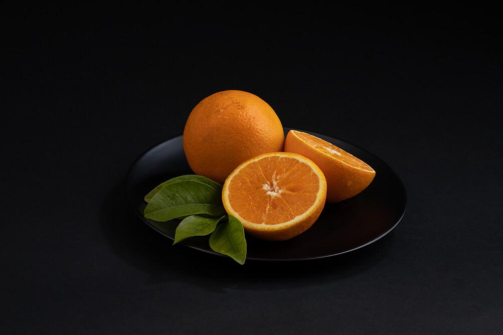 20190516-citrocasa-studio-329_reduziert